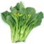 Photo of Chinese Vegetables (Each)