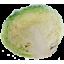 Photo of Savoy Cabbage Half