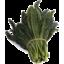 Photo of Organic Tuscan Kale