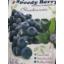 Photo of Speedy Berry Frz Blueberries 1kg