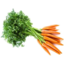 Photo of Carrots Spring Bunched