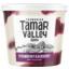 Photo of Tamar Valley Strawberry & Blueberry Greek Style Yoghurt 700g