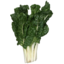 Photo of Silverbeet