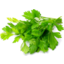Photo of The Good Grocer Collection Fresh Italian Parsley 10g