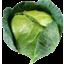 Photo of Cabbage Plain Whole Ea