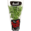 Photo of Superb Herb Living Herb Large Pot Basil