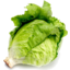 Photo of Lettuce - Iceberg