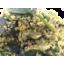 Photo of Classic Fresh Salad Medium