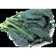 Photo of Kale Black Tuscan Organic Bunch