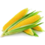 Photo of Sweet Corn