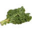Photo of Green Kale (Bunched)