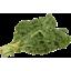Photo of Kale - Green - Cert Org