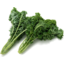 Photo of Kale - Green Curly