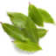 Photo of Thymebank Bay leaf 10gm