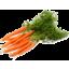 Photo of Carrots - Dutch