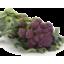 Photo of Ramarro Farm Broccoli Purple