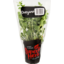 Photo of Superb Herb Living Herb Oregano 15g