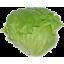 Photo of Lettuce Iceberg Ea