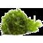 Photo of Parsley Organic Bunch