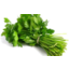 Photo of Parsley Continental