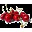 Photo of Fresh Red Cherries