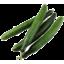 Photo of Cucumber Continental Ea