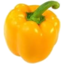 Photo of Capsicum: Yellow