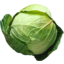 Photo of Cabbage - Green - Cert Org - Whole