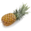 Photo of Pineapple - Smooth Leaf