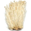 Photo of Enoki Mushrooms 200gm