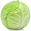 Photo of Green Cabbage