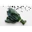 Photo of Kale - Tuscan Black
