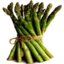 Photo of Asparagus Bunch
