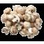 Photo of Mushrooms White