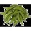 Photo of Peas Loose