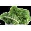Photo of Kale
