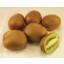 Photo of Kiwi Fruit *Pack of 5* NZ
