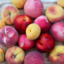 Photo of 6kg  Mixed Summerfruit Box