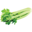 Photo of Celery Whole