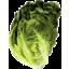 Photo of Lettuce Mini Cos