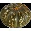 Photo of Pumpkin Jap